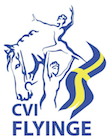 CVI Flyinge 2016