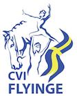 CVI Flyinge 2016